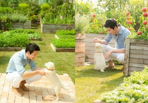 Hyun Bin Can't Take His Eyes Off Playful Puppy
