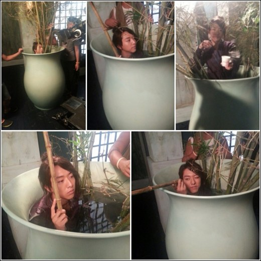 JUNGSHIN in a pot