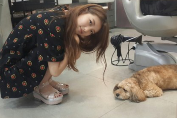 suzy with lee hyoris dog