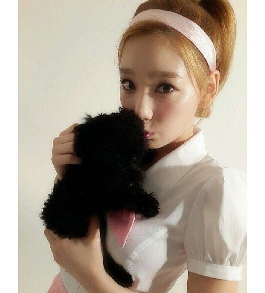 It's a Pet's World and K-Pop Idols Just Love In It