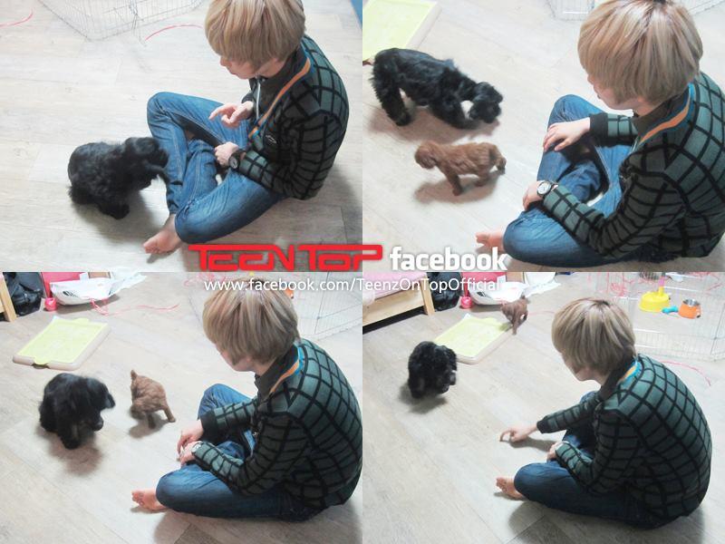teentop_dogs1