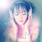 under the radar pearl:k nobody knows