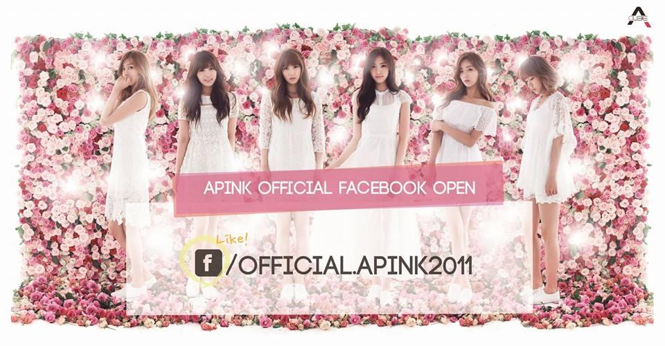 APINK_FB_TWITTER