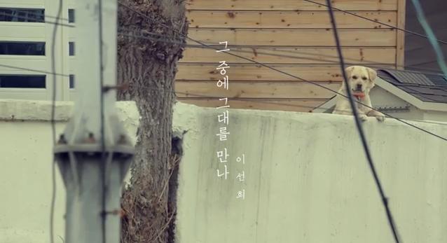 Lee sun hee meet him among them mv