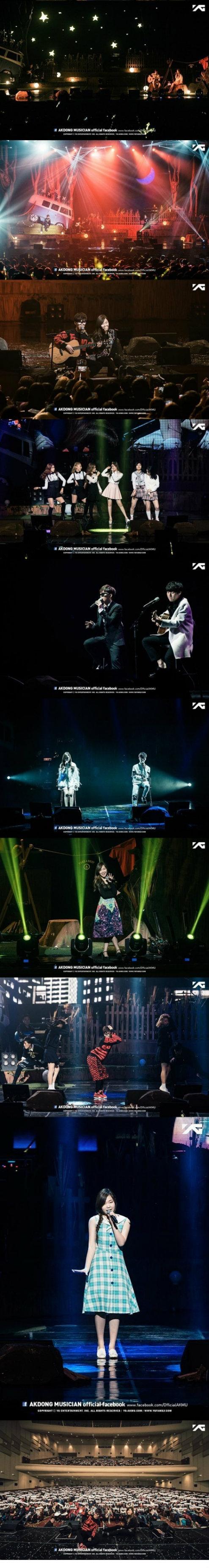 akmu concert in busan
