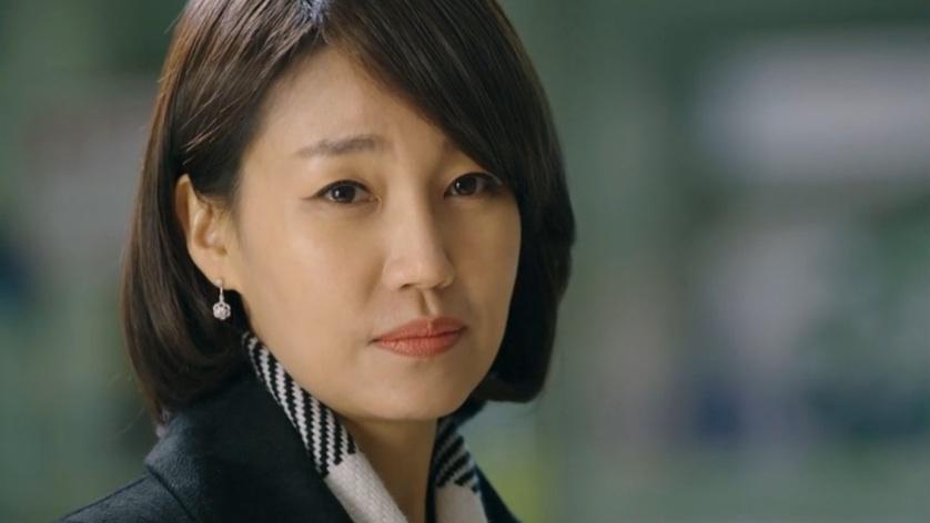 pinocchio jin kyung cover final
