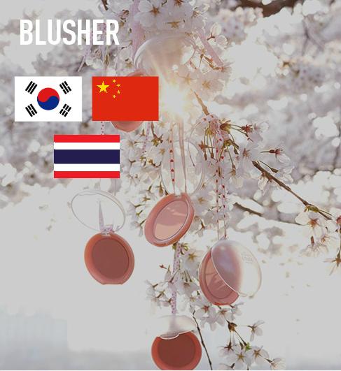BlusherFavorite