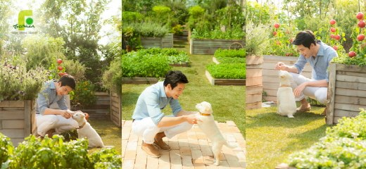 Hyun Bin puppy 1