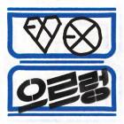 080313_EXO_Newalbumsandsinglespreview