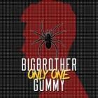 111613_Gummy&BigBrother_Newalbumsandsinglespreview