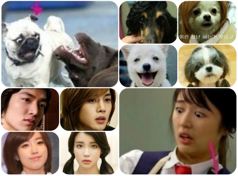 [Gallery] Lee Minho, G-Dragon, Yoon Eun Hye, IU, Plus Others and Their Doggie Dopplegangers