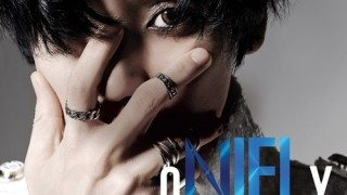niel album cover