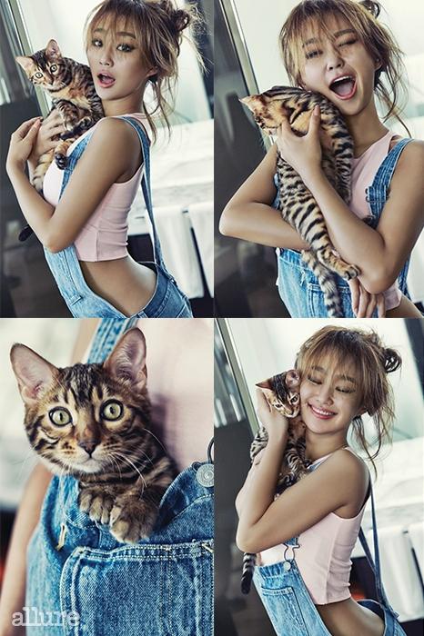 hyorin allure cats 3