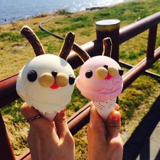 rabbit-ice-cream-jeju