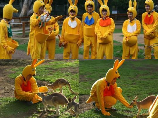 soompi running man kangaroo