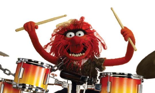 Animal drums