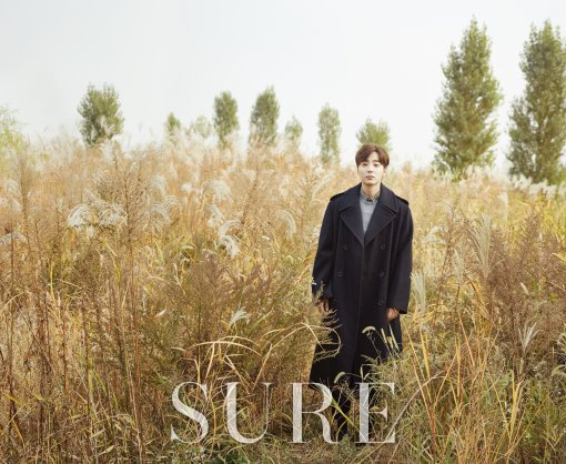 roy kim-sure3