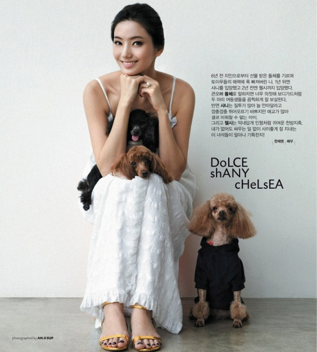 Han Chae Young Family